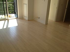 Engineered Maple Wood Floor